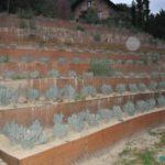 Ravne terase