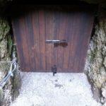 Vhodna vrata z izgledom lesa